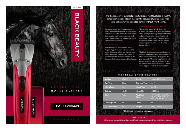 Liveryman product flyer design
